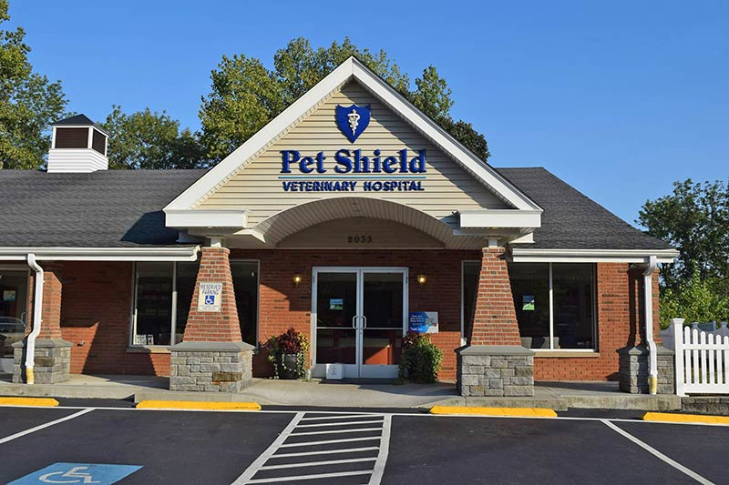 North Branford veterinary hospital